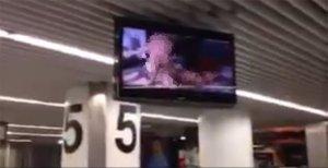 video-lisboa