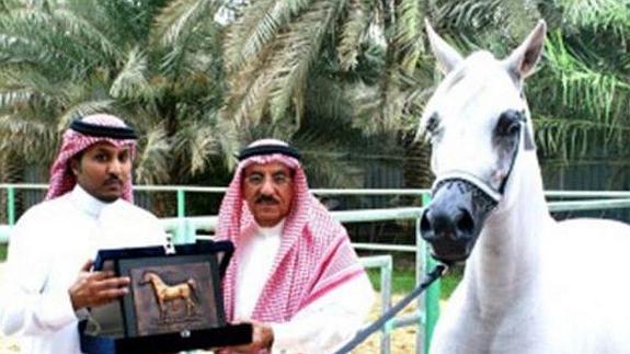 caballo-homo
